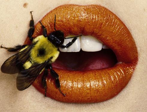 Irving Penn: una mostra-tributo alla carriera del fotografo