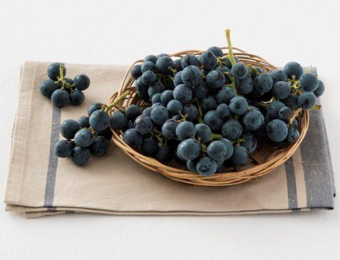Uva fragola o uva americana?